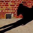 shadowy angel by wildwomenlove
