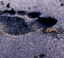 Photography of foot print on black sand by Mel-D