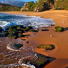 Turimetta Beach by Ian English