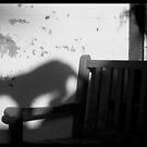 Cat shade by Tjerk