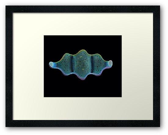 Blue Ribbon by BlueOcean