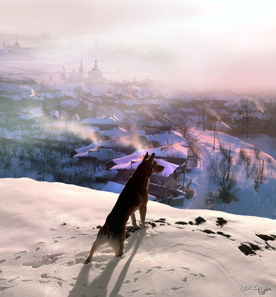Winter Morning by Igor Zenin