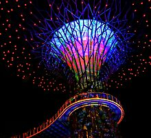 Supertree Grove At Gardens By The Bay Singapore by Ian Mooney