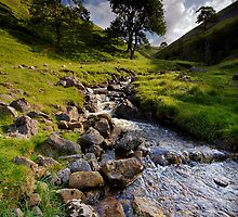 Summer Stream by Andrew Leighton