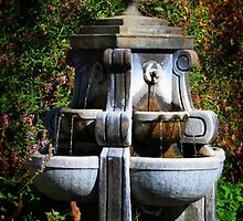 Water Fountain by Henrik Lehnerer