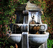 Water Fountain by Henrik Lehnerer