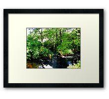 Small river Framed Print