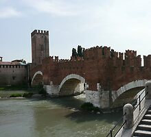 Bridge and castle in Verona by pljvv