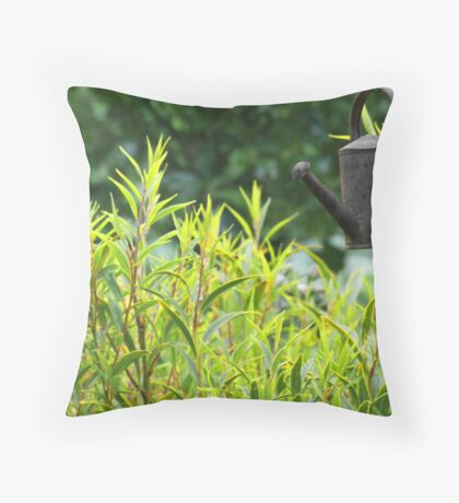 Flying Watering can Throw Pillow