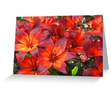 Red Beasts Greeting Card