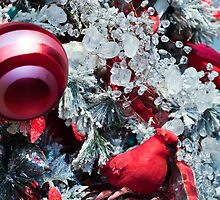 Icy Christmas Tree by Tim Poitevin