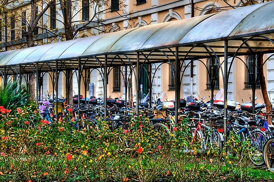 Cycling  by oreundici