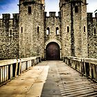 Gate to The Fort - Cardiff Castle by Stanley Tjhie
