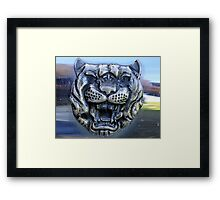Dare the Cat to Purr!! Framed Print