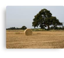 Round Hay Bale near Werribee Canvas Print