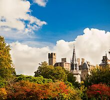 Cardiff Castle - Castle in the Clouds by Stanley Tjhie