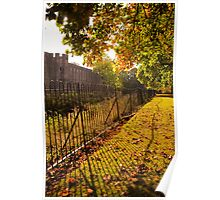 Rusty Fence in the Autumn Sun Poster