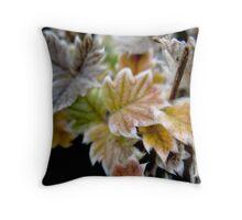 Fuzzy Coloured Flora Throw Pillow