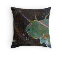 Green grocer cicada  Throw Pillow