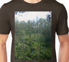 an awesome Belize