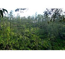 an awesome Belize landscape Photographic Print