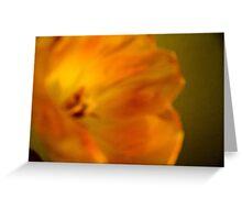 peach petal Greeting Card