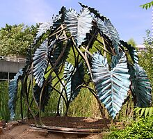Botanic Sculpture by coffeebean