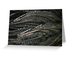 Sago Palm leaves in a strange world.  Greeting Card