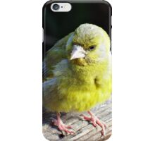 These are on the Decline. iPhone Case/Skin