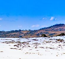 Hut in the snow - Mt Perisher by Geoffrey Thomas