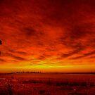 Eventide Glow by Helen Simpson
