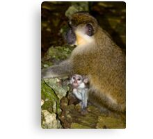 look mommy whos that Canvas Print