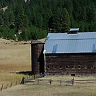 East Side Barn by DavesPhoto