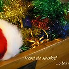 Christmas - Forget the Stocking by Deanna Roberts Think in Pictures