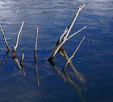 Icy Daggers by Ryan Houston
