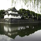 Imperial Palace Tokyo by Marcia Luly