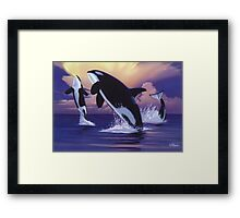Killer Whales Framed Print