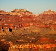 South Rim, Grand Canyon by Olga Zvereva