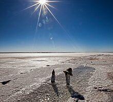 Wherever I Lay My Hat • Lake Hart • South Australia by William Bullimore