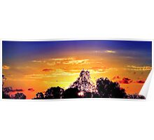 Fiery orb - sunset at Nudgee Beach Poster