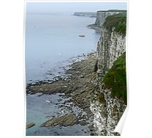 Coastal View Poster