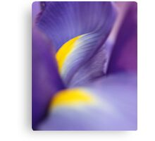Revealing Her Inner Beauty - Purple Iris Canvas Print