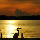 Islamorada Sunset by JKKimball