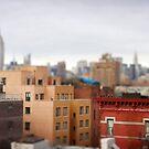 New York by David Lamb