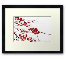 berries and snow Framed Print
