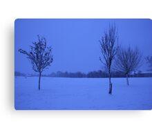 Snowy Countryside Canvas Print
