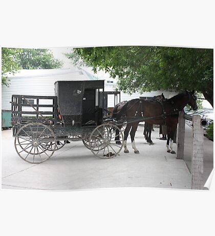 Amish Buggy #1 Poster