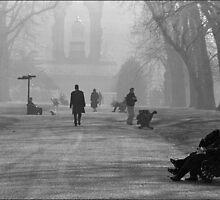 Kensington Gardens, London by aldogallery