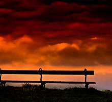 Sky Bench by Sue Smith