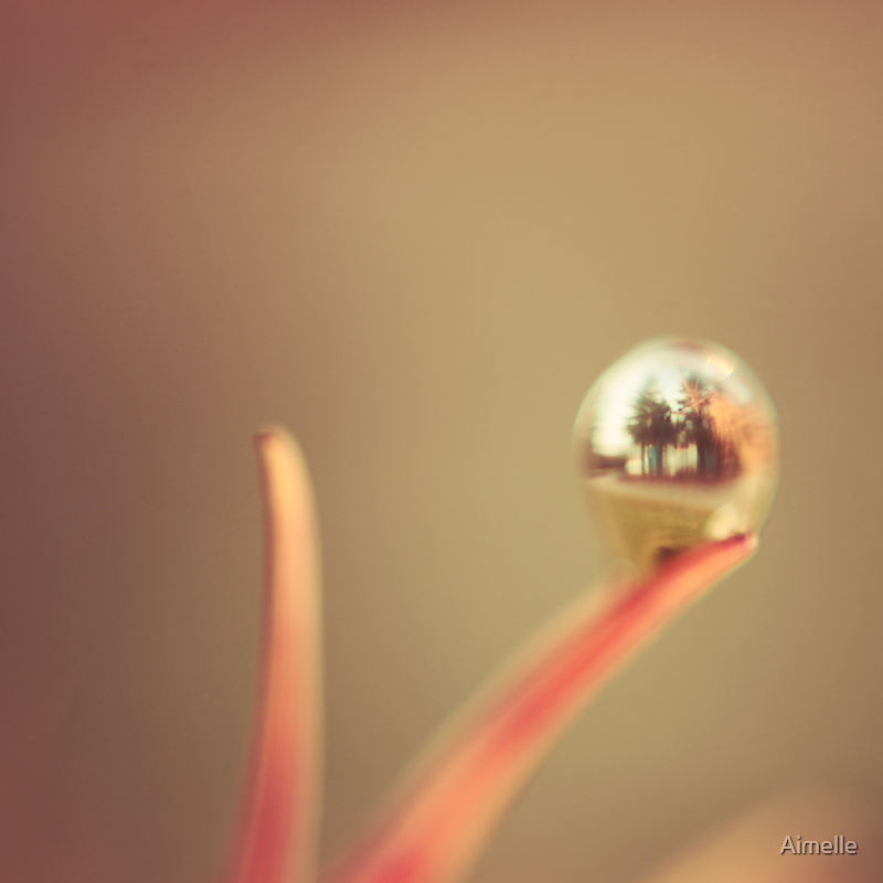 water world by Aimelle